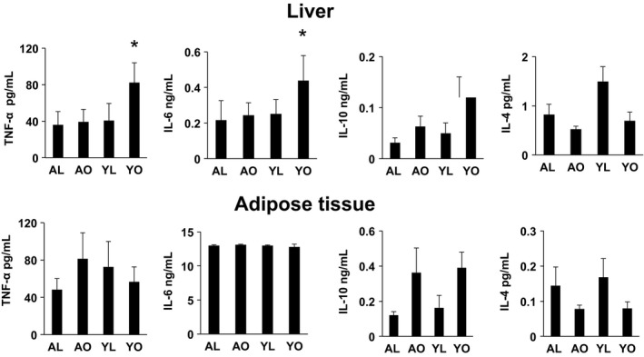 Cytokine production by liver immune cells and adipose tissue (AT) stromal vascular cells <t>(SVC).</t> Isolated immune cells from liver (upper panel) and SVC from AT (lower panel) were cultured for 18 h in complete <t>DMEM</t> medium. The harvested media was analyzed for the indicated cytokines using Luminex. Data are presented as mean ± SE (minimum of five animals/group analyzed individually). Significant differences are indicated (* P