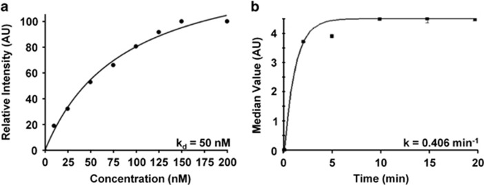 Characterization of EGFR peptide-binding parameters. ( a ) Apparent dissociation constant k d =50 n m , R 2 =0.95 was measured for binding of QRH*-Cy5.5 to HT29 cells. ( b ) Apparent association time constant k =0.406/min (2.46 min) was measured for binding of QRH*-Cy5.5 to HT29 cells. Both results are representative of six independent experiments.