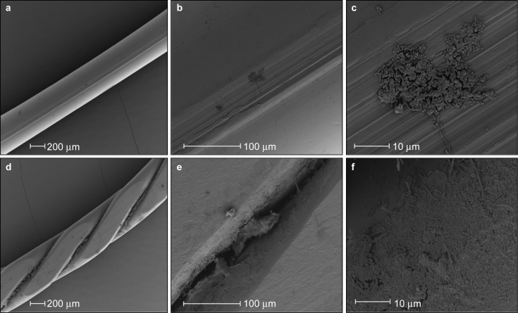 Scanning electron micrographs of 1-week-old biofilms formed in vivo during use of a toothpaste without antibacterial claims. ( a – c ) Single-strand wire. ( d – f ) Multi-strand wire.