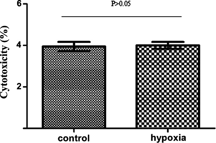 Cytotoxic effect of hypoxia on MDA-MB-231 cells. The cytotoxicity values are 9.871 ± 0.553 % for hypoxic cells and 10.002 ± 0. 417 % for normoxic control cells, which indicated that hypoxic treatment had no significant cytotoxic effect on MDA-MB-231 cells ( P > 0.05)