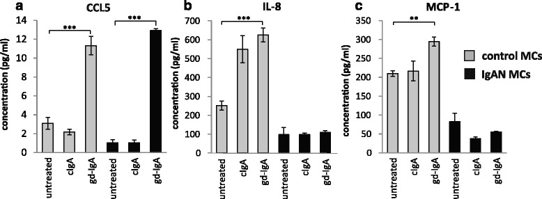 Release of CCL5, IL-8 and MCP-1. Mesangial cells (MCs) from patients with IgA nephropathy (IgAN) and controls were stimulated with IgA1 purified from blood from healthy controls (cIgA) or patients with IgAN (gd-IgA) or medium only for 24 h and the release of cytokines into the medium was investigated. Stimulation of control MCs and IgAN MCs with gd-IgA resulted in an increased release of CCL5 in both groups of cells, in contrast stimulation with cIgA did not affect either group of cells at all ( a ). Only the control MCs responded to treatment with gd-IgA with an increased release of IL-8 ( b ) and MCP-1 ( c ). Grey bars represent control MCs, black bars represent IgAN MCs * P