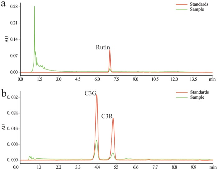 Chromatograms of rutin (A) and anthocyanins (B) of TF by UPLC-TUV. Rutin and anthocyanins were separated on the same Acquity UPLC BEH C18 column (2.1x100 mm, 1.7 μm, Waters, Milford, MA). Rutin separation used MeOH and 0.1% H 3 PO 4 as the mobile phase at 0.21 mL/min with detection at 358 nm. Anthocyanins separation used ACN and 0.2% H 3 PO 4 as the mobile phase at 0.3 mL/min and detection at 520 nm. Rutin: quercetin-3-O-rutinlside; C3G: cyanidin-3-O-glucoside; C3R: cyanidin-3-O-rutinoside; and TF: total flavonoids.