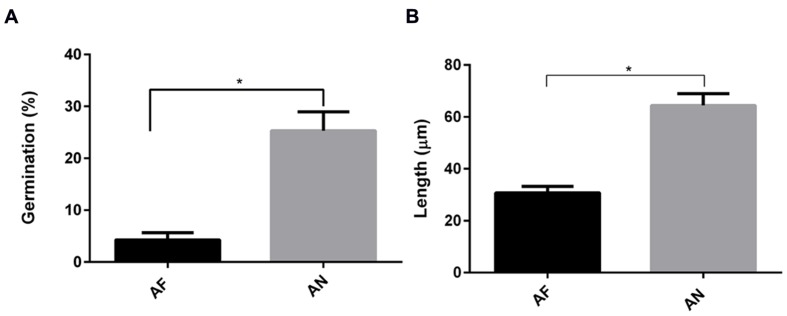 Germination and hyphal length of A. fumigatus are more effectively decreased in the presence of A549 cells than that of A. niger . (A) Germination and (B) hyphal length. Bar represents standard error of the mean. ∗ Indicates significant difference. Data are obtained from three separate experiments; at least 100 conidia per condition were analyzed.