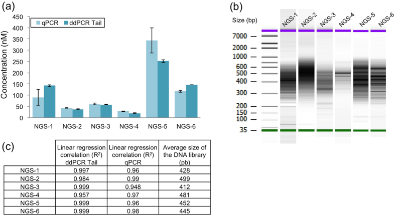Titration of six NGS libraries with low abundance with qPCR and ddPCR Tail. ( a ) Comparison of two methods for low abundance NGS libraries, titration results using qPCR and the ddPCR-Tail system. Assay done in triplicate and mean calculated using dilution correction factors (average of 18 values per sample). Mean ± SD shown. ( b ) Bioanalyzer image results used to calculate final molarity for the qPCR measurement, algorithm provided by KapaBiosystem using the average size of the NGS library combined with the qPCR standard curve. ( c ) All libraries were successfully quantified with high confidence (linear regression all in 0.9), ddPCR Tail strategy showed a better overall linearity regardless of the heterogeneity of the libraries.