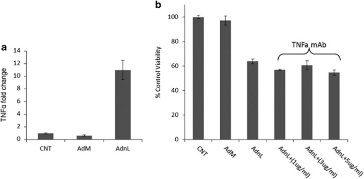 mCD40L-induced <t>TNF</t> -α does not contribute to CD40L-induced cell death. ( a ) EJ cells were infected with 100 MOI of either RAdMock (AdM) or RAdnCD40L (AdnL) or left uninfected as a negative control for 24 h, RNA was extracted utilising the EZ-RNA total isolation kit and the cDNA was prepared by reverse transcription. The expression of TNF -α was examined by qRT-PCR technique. Results are mean of triplicate samples ±S.D. ( b ) EJ cells were infected with 100 MOI of either RAdMock (AdM) or RAdnCD40L (AdnL) or left uninfected as a negative control and plated at a density of 6000/100 μ l/well in 96-well microplate. AdnL-infected cells were either treated with 1, 3 or 5 μ g/ml of TNF -α monoclonal neutralising antibody or left untreated as a control for 28 h. Cell viability was then assessed using the WST-1 assay. Results are mean of triplicate samples ±S.D.