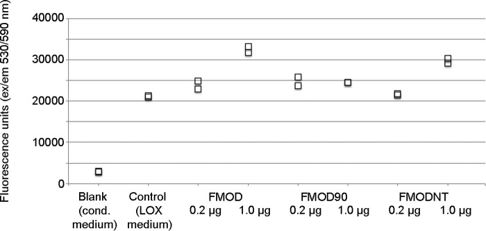 Lysyl oxidase activity in the presence of fibromodulin. Lysyl oxidase activity was measured with a commercial kit. As a sample, conditioned ( cond ) medium from 293T cells expressing LOX (or from LOX-negative control cells) was used. The medium was preincubated for 1 h with FMOD or its variants and then mixed with the substrate and incubated for 15 min at 37 °C. Enzyme activity was measured by fluorescence emission at 590 nm after excitation at 530 nm. The plotted values are biological duplicates. Similar results were obtained in three independent experiments.
