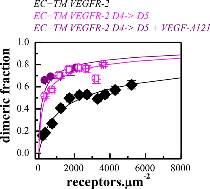 Dimerization curves for the wild-type VEGFR-2 in the absence of ligand, the D4→D5 mutant in the absence of ligand, and the D4→D5 mutant in the presence of VEGF-A 121 . DOI: http://dx.doi.org/10.7554/eLife.13876.014