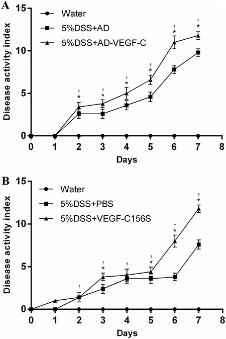 Evaluation of disease activity index (DAI) in AD-VEGF-C-treated mice. Mean DAI scores (±SD) were higher in the AD-VEGF-C-treated mice ( A ) and in recombinant VEGF-C156S-treated mice ( B ), compared to DSS-treated mice. The difference in DAI scores between AD-VEGF-C-treated mice and DSS-treated mice became significant on the second day of observation and continued to differ thereafter. There was a significant difference in DAI scores between recombinant VEGF-C156S-treated mice and PBS-treated mice on days 3, 5, 6 and 7. *P