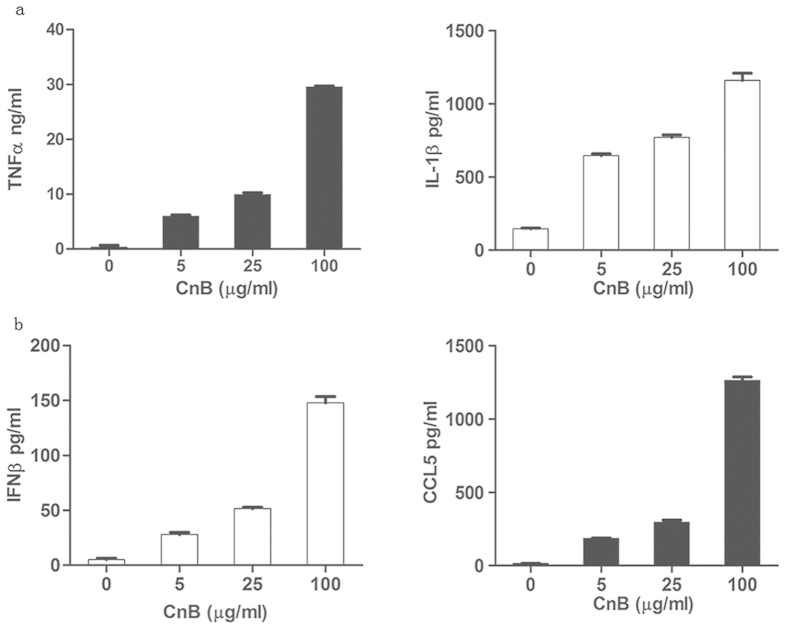 CnB triggered cytokine secretion via the TLR4 signalling pathway in RAW264.7 macrophages, but not in SK-HEP-1 cells. ( a ) CnB induced the secretion of pro-inflammatory cytokines secretion through the MyD88-dependent pathway in the macrophage cell line. ( b ) CnB induced CCL5 and IFNβ secretion through the TRIF-dependent pathway in the macrophage cell line. The RAW264.7 cells were treated with 5, 25, and 100 μg/ml CnB for 24 h, and the SK-HEP-1 cells were treated with 200, 400, and 800 μg/ml CnB for 48 h. The amounts of secreted cytokines were determined by ELISA. Data represent mean ± s.e.m. from three independent experiments.