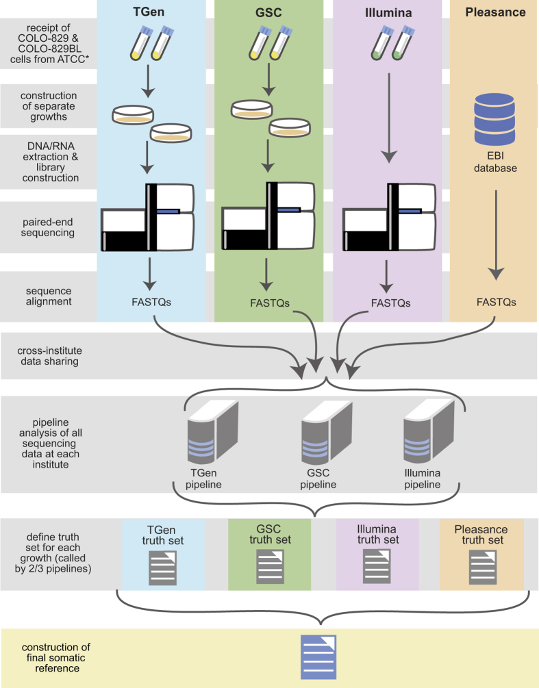 Overview of data generation and collection. <t>*Illumina</t> acquired extracted <t>DNA</t> from ATCC for library construction, sequencing, and analysis.