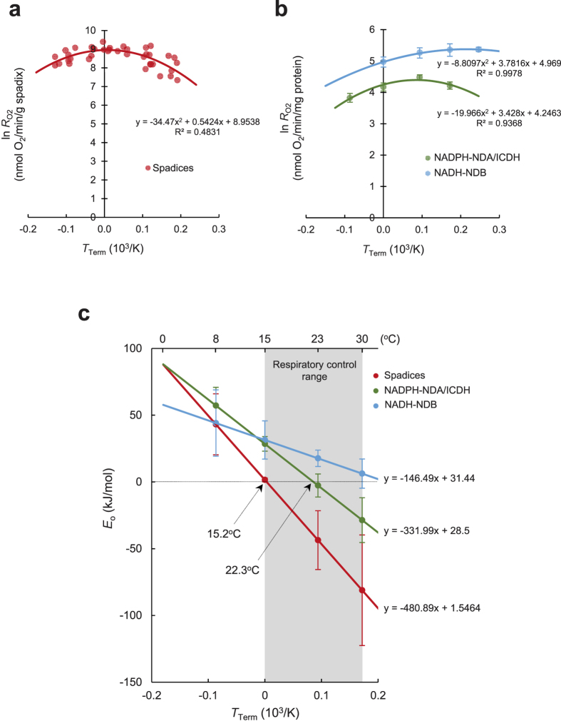 Comparison of the relationship between temperature and E o for respiration in intact spadices and mitochondria in skunk cabbage. ( a ) Curve fitting of the respiration rates in intact spadices using a modified Arrhenius model. Data are derived from Seymour et al . 7 . ( b ) Curve fitting of the respiration rates in isolated mitochondria using a modified Arrhenius model. Data are from mitochondrial respiration operated by <t>NADP</t> + <t>-ICDH</t> and NDA (NADPH-NDA/ICDH; green), and by NAD + -NDB (NADH-NDB; light blue). Respiration rates were determined under constant temperature at 8 °C, 15 °C, 23 °C or 30 °C in respiration via NADPH-NDA/ICDH and at 15 °C, 23 °C, 30 °C or 37 °C via NADH-NDB (n = 6). ( c ) Determination of temperature responses of E o for intact spadices and mitochondrial respiration. Changes of E o value for intact spadices (red), isolated mitochondria (NADPH-NDA/ICDH (green) and NADH-NDB (light blue)) are depicted (n = 6). Intersection points of E o are shown for spadices and NADPH-NDA/ICDH at 15.2 °C and 22.3 °C, respectively.