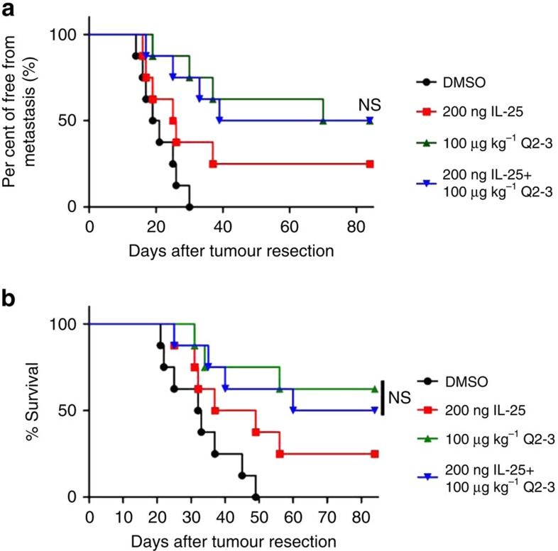 In vivo treatment of Q2-3 confers comparable anti-metastatic activity with IL-25 administration. ( a ) Tumour-resected mice ( n =8 per group) were treated with PBS (0.1% DMSO in saline), IL-25 (200 ng per mice), Q2-3 (100 μg kg −1 ) or co-treated with IL-25 and Q2-3 for 3 weeks. Quantification of tumour metastasis by measuring luciferase activity in photons s −1 cm −2 sr −1 in mice revealed along the indicated time course. ( b ) Survival of test mice after different treatments. NS, no significant difference between the Q2-3 and co-treatment groups (Kaplan–Meier results were analysed by log-rank test). Similar results were obtained from three independent experiments.