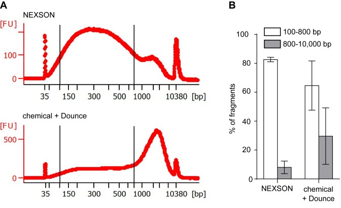 NEXSON enhances the reproducibility of chromatin shearing. ( A ) Size distribution after chromatin shearing when extracting nuclei with either NEXSON or chemical and Dounce treatment from a single, formaldehyde-fixed cell batch (human monocytes). Chromatin was sheared with identical sonicator settings and DNA size distribution was analyzed using capillary electrophoresis. Note that differences in ultrasound exposure between the two workflows (NEXSON or chemical + Dounce) were normalized prior chromatin shearing. Electropherograms, generated with Agilent expert 2100 software, show the size distribution of the respective samples. Optimal chromatin size distribution for ChIP-seq is located between the two bars (100–800 bp). x axis: base pairs (bp), y axis: fluorescence units (FU). ( B ) Quantitative analysis of the chromatin size distribution of three different samples after nuclei extraction with NEXSON or chemical + Dounce homogenizer treatment. Bars show the percentage of DNA fragments in the optimal (between 100 and 800 bp, white bars) or inadequate (800–10 000 bp, gray bars) size range for ChIP-seq. Percentages of fragments in the respective region are calculated with Agilent Bioanalyzer software and averaged (error bars indicate s.d.; n = 3: fixed monocytes, IMR-90 and hepatocytes samples).