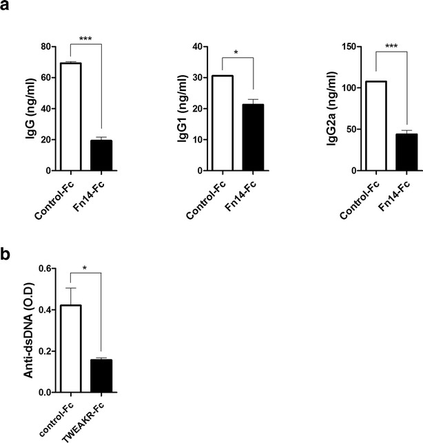 In vivo effect of Fn14-Fc on Ig production in SLE mice. Sanroque mice were injected intraperitoneally with Fn14-Fc (100 μg/mouse) or control-Fc (100 μg/mouse) (n = 5/group) for 3 weeks. Mice were sacrificed on day 21 after the first injection. The serum total IgG, IgG1 and <t>IgG2a</t> levels were determined by <t>ELISA.</t> Data are expressed as means ± SDs. * P