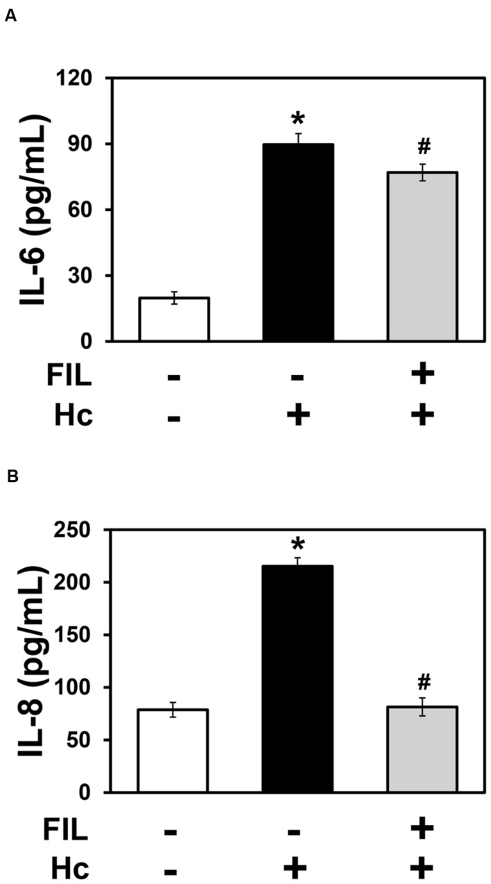 Effect of filipin on IL-6 and IL-8 secretion by A549 cells during interaction with H. capsulatum . A549 cells were incubated in the absence or presence of 1 μg/ml filipin (FIL, a cholesterol-binding compound that disrupts membrane rafts). After 2 h, H. capsulatum yeasts (Hc) were added to these cultures. After 16 h, culture supernatants were collected, and IL-6 (A) and IL-8 (B) levels were determined by ELISA. To analyze basal cytokine levels, A549 cells were incubated in the absence of filipin and H. capsulatum (FIL -/Hc -).Values represent the mean of triplicate experiments ± the standard deviation. ∗ p
