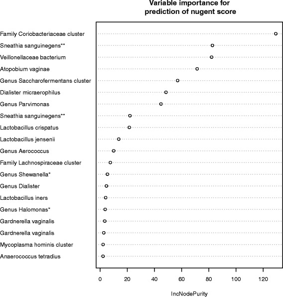 """Predictive power of various microbial species for BV. The abscissa shows the mean """"increase in node purity"""" for the prediction of the Nugent score (a measure of how the sequence abundance of the specific species or family denoted on the ordinate contributes to the classification of the sample). The ordinate presents the family, genus, species determination on the basis of 16S rRNA amplicon sequencing. Two different strains of G. vaginalis are presented"""