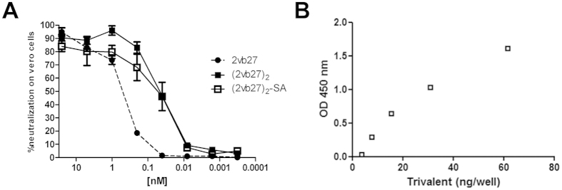In vitro activity of 2vb27 VHH under different formats. ( A ) Serially diluted purified 2vb27, (2vb27) 2 or (2vb27) 2 -SA were tested on the Vero cell neutralization assay as detailed in Materials and Methods. Each sample was tested by quadruplicate and is represented as mean ± SEM. ( B ) Binding of (2vb27) 2 -SA to human seroalbumin (SA). Nickel coated Maxisorp microtiter plates were incubated with serially diluted (2vb27) 2 -SA. Biotinylated human SA was added and binding was detected with Streptavidin-HRP. Reaction was developed with TMB and absorbance was read at 450 nm.