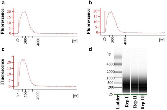 Amplification of cDNA, where a – c represents three replications of syncytial samples processed after LCM. The virtual gel generated by an Agilent 2100 Bioanalyzer is shown in d . nt nucelotide, bp base pair