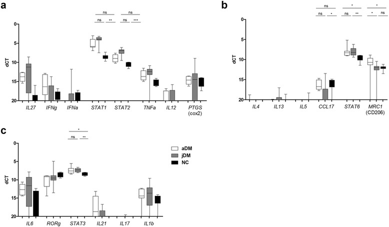 Expression of pro- and anti-inflammatory markers in DM patients. Cytokines driving Th1-, Th2- and Th17 pathways were analyzed in adult and juvenile patients. Expression levels of STAT1 and <t>STAT2</t> were significantly increased in jDM patients, while STAT6 showed a significant increase in aDM muscle biopsies. Overall Th17-associated immune markers were expressed on a very low level. Data are represented as Box-Whiskers blot min-max with mean and standard deviation, level of significance p