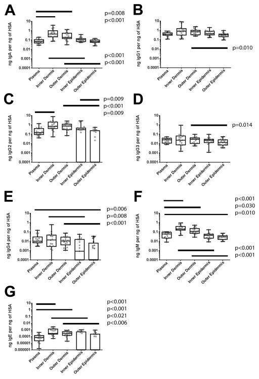 Comparison of dermal and epidermal foreskin Igs to blood Igs Foreskin and plasma samples from 17 participants were compared by calculating the ratios of each antibody concentration normalized to Human Serum Albumin (HSA) in each sample. HSA, A) IgA, B) IgG1, C) IgG2, D) IgG3, E) IgG4, F) IgM, and G) IgE were measured by multiplex bead array (MBA). Samples under the level of detection are graphed at the bottom of the axis. Only significant differences in Wilcoxon post-test after Bonferroni correction for eight comparisons are reported in the figure.