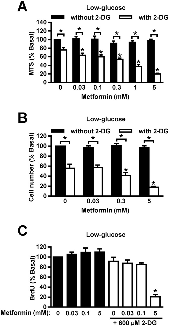 Low concentrations of 2-DG and metformin reduce viability of <t>MDA-MB-231</t> cells synergistically. (A) MDA-MB-231 cells were treated with metformin and 600 μM 2-DG for 72 hours in low-glucose (1 g/L) RPMI-1640. Medium was renewed daily. Viability was determined by MTS assay. Results are means±SEM (n = 3–4). * P ≤0.05. (B) MDA-MB-231 cells were treated with metformin and 600 μM 2-DG for 72 hours in low-glucose RPMI-1640. Medium was renewed daily. Cell number was determined by Hoechst assay. Results are means±SEM (n = 3–4). * P ≤0.05. (C) MDA-MB-231 cells were treated metformin and 600 μM 2-DG in low-glucose RPMI-1640 for 24 hours. Proliferation was determined by <t>BrdU</t> assay. Results are means±SEM (n = 3). * P ≤0.05.