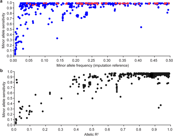 Accuracy of genome sequence-resolution imputation. Scatter plots showing imputation accuracy (minor allele sensitivity) of imputed sequence variants relative to minor allele frequency (2A), and allelic R 2 (2B) values. These comparisons used 790 SNPs common to both imputed genome and RNA-seq-derived genotype sets, where variants called from the RNA-seq alignments were used to assess sequence imputation accuracy in these 406 animals. Red variants shown in panel 2A represent the subset of real (i.e. not imputed) genotypes in the genome sequence-derived dataset (70 SNPs from the Illumina BovineHD chip), giving an indication of the accuracy of variant calls derived from the RNA-seq-alignments.