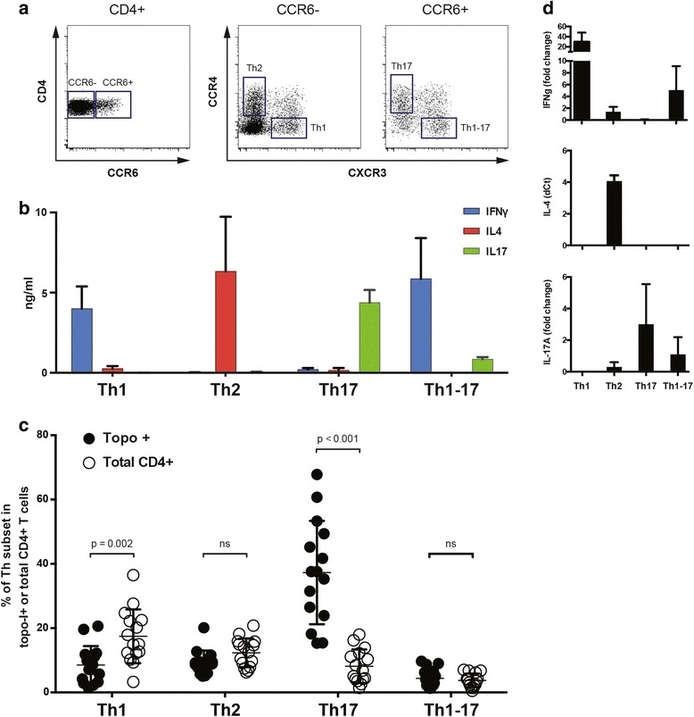 Topoisomerase-I-specific CD4+ T cells show a Th17 polarized functional phenotype. a CD4+ T cell subsets were identified by flow cytometry using the combined surface expression of chemokine receptors CCR6, CXCR3, and CCR4. b After sorting, the different T helper subsets were stimulated with anti-CD3/CD28 beads for 48 h and secretion of IFNγ, IL-4, and IL-17A was measured in their supernatants by enzyme-linked immunosorbent assay ( bars represent mean ± SE, n = 3). c The distribution of polarized T helper subsets within topo-I-specific CD4+ T cells ( closed circles ) is shown in comparison to the general CD4+ population ( open circles ). T test with Bonferroni correction was used for multiple comparisons. Lines indicate mean ± SD. d After sorting topo-I-specific CD4+ T cells according to their polarized T helper phenotype (range 16–2064 cells), mRNA expression levels of IFNγ, IL-4, and IL-17A were measured by qPCR using the Arcturus® PicoPure® RNA Isolation system, which is designed to recover high-quality RNA from a very low number of cells (10–500 cells) and to accomplish cDNA synthesis from minimal amounts of cDNA. IFNγ and IL-17A expression was calculated as fold change in reference to a mix of topo-I-reactive CD4+ T cells from three patients; IL-4 expression is reported as delta Ct from actin expression since it was not detectable in the reference population. Data are representative of four separate patients (mean ± SE)
