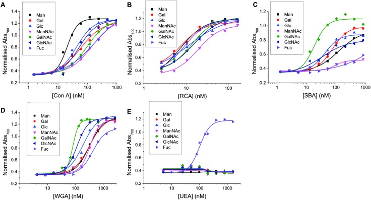 Dose-dependent binding isotherms of Man, Gal, Glc, ManNAc, GalNAc, GlcNAc and Fuc functionalised particles with (A) Con A (B) RCA 120  (C) SBA (D) WGA (E) UEA.