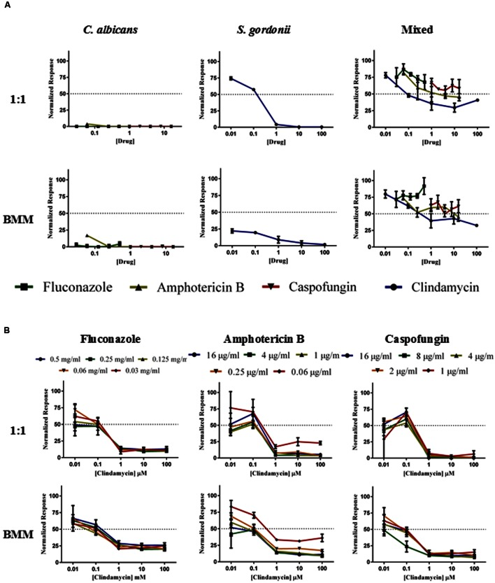 Inhibition of biofilm formation in single- and dual species C. albicans/S. gordonii biofilms formed in 1:1 v/v RPMI/ THB + 0.02% YE media (upper panels A,B) or BMM synthetic saliva (BMM, lower panels A,B) by monotherapy (A) and by antibacterial/antifungal combination therapy (B). Drugs concentrations were as follows: Clindamycin at 100, 10, 1, 0.1, 0.01 μM; Fluconazole at 0.5, 0.25, 0.125, 0.0625, and 0.03125 mg/ml; Amphotericin B at 16, 4, 1, 0.25, 0.0625 μg/ml, and Caspofungin at 16, 8, 4, 2, 1 μg/ml.