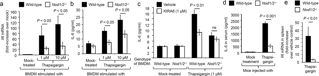 Thapsigargin induced IL-6 production is dependent on NOD1 and NOD2 ( a–c ) BMDM from Nod1/2 −/− mice and wild type littermates (n = 8) were stimulated with thapsigargin ( a and b ) and/or KIRA6 ( c ) and Il6 mRNA expression ( a ) and IL-6 protein synthesis ( b and c ) were measured. ( d and e ) Nod1/2 −/− mice and wild type littermates (n = 7) were injected with thapsigargin and IL-6 production in the serum ( d ) and Il6 mRNA expression in the spleen ( e ) were determined. Data are presented as mean ± s.e.m.