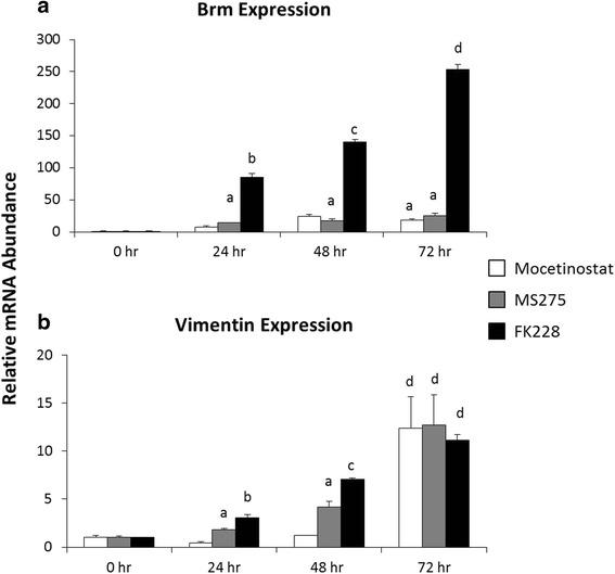 Inhibitors of HDAC1 increase BRM and VIM expression in a time-dependent manner. Total RNA was isolated from untreated SW13- cells (0 h), and SW13- cells treated with 0.15 μM MGCD0103, 0.51 μM MS-275, or 2 nM FK228 for 24, 48, and 72 h. Fold change in ( a ) BRM and ( b ) VIM mRNA expression from 0 h was determined by real-time PCR analysis using the 2 -ΔΔCt method normalized to GAPDH. Data are presented as mean ± SEM. Superscripts indicate statistical significance, p
