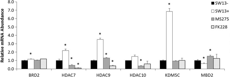 Validation of select genes related to epigenetic chromatin modification and remodeling by qPCR. Relative expression of a total of bromodomain containing 2 (BRD2), HDAC7, HDAC9, HDAC10, lysine (K)-specific demethylase 5c (KDM5C), and methyl-CpG binding domain protein 2 (MBD2) was examined in stable SW13- and SW13+ subtypes and SW13- cells which had been treated for 24 h with either 0.51 μM MS-275 or 2 nM FK228. Fold-regulation was determined by the 2 -ΔΔCT method using GAPDH as the invariant control. Data are presented as mean ± SEM. *Denotes statistical difference from SW13-, p