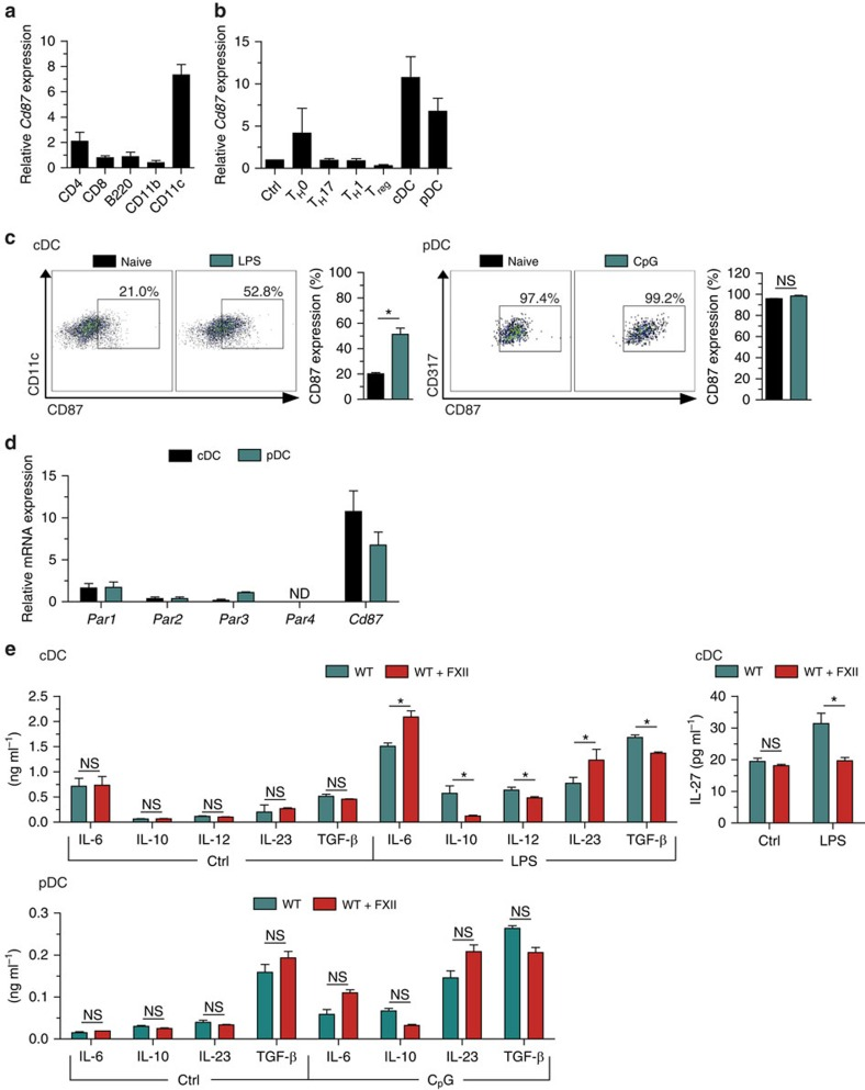 FXII favours the emergence of T H 17 cells via DC. ( a ) Real-time reverse transcription–PCR (rRT–PCR) analyses for Cd87 gene expression in CD4 + , CD8 + and B220 + cells isolated from lymphocytes as well as in <t>CD11b</t> + and CD11c + cells isolated from spleens of naive WT mice. ( b ) rRT–PCR analyses for Cd87 gene expression in CD4 + CD25 − (Crtl) and CD4 + CD25 + (T reg ) cells isolated from lymph nodes under basal conditions or after a 48-h incubation with antibodies against CD3 and CD28 under neutral conditions (T H 0) or in the presence of the appropriate cytokine and neutralizing antibody mixtures for differentiation into T H 1 or T H 17 cells as well as in splenic cDCs or pDCs. ( c ) Flow cytometry analysis for CD87 expression in cDCs (stained with CD11c, left panel) and pDCs (stained with CD317, right panel) isolated from the spleen under basal conditions or after a 24-h stimulation with 1 μg ml −1 LPS or 10 μg ml −1 CpG oligodeoxynucleotide 1,826, respectively. For cDCs and pDCs, representative dot plots for CD87 expression are shown. ( d ) rRT–PCR analyses for Par1 , Par2 , Par3 , Par4 and Cd87 expression in cDCs and pDCs isolated from the spleen. ( e ) Splenic cDCs and pDCs from WT animals were incubated with medium only (Ctrl) or stimulated with 1 μg ml −1 LPS (for cDCs) or with 10 μg ml −1 CpG oligodeoxynucleotide 1,826 (for pDCs) in the absence or presence of 60 nM FXII, respectively. After 48 h, cytokine concentrations were measured in culture supernatants. In a , b and d , data are given as mean±s.e.m. of three independent experiments and presented as fold change in transcript expression relative to 18S rRNA. In c and e , data are given as mean±s.e.m. of three independent experiments, each performed in triplicate (non-parametric Mann–Whitney U -test). * P
