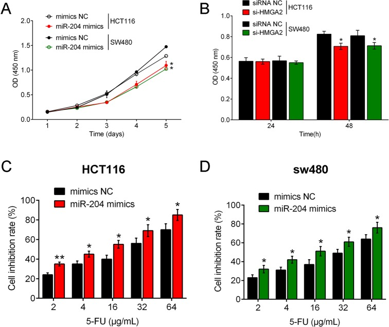 miR-204 facilitates the inhibitory effect of 5-Fu on CRC cell lines. (A) CRC cell proliferation was examined under conditions of miR-204 <t>overexpression</t> by miR-204 mimic transfection or HMGA2 inhibition by si-HMGA2 without 5-Fu treatment to verify the role of miR-204/HMGA2 in CRC cell growth. Results showed that proliferation of both HCT116 and SW480 cell lines were inhibited by miR-204 overexpression or HMGA2 inhibition compared with null-transfected cell lines. (B) Under a dose-dependent 5-Fu treatment at concentrations of 2, 4, 16, 32 and 64 μg/ml, proliferation levels of miR-204 mimic-transfected CRC cell lines were examined. Results showed that cell inhibition rate of HCT116 and SW480 cell lines increased with 5-Fu dose, and the cell inhibition rate of miR-204 mimic-transfected CRC cell lines was higher compared with null-transfected cell lines. Figure is representative of three experiments with similar results. Data represented as means±s.d.; * P