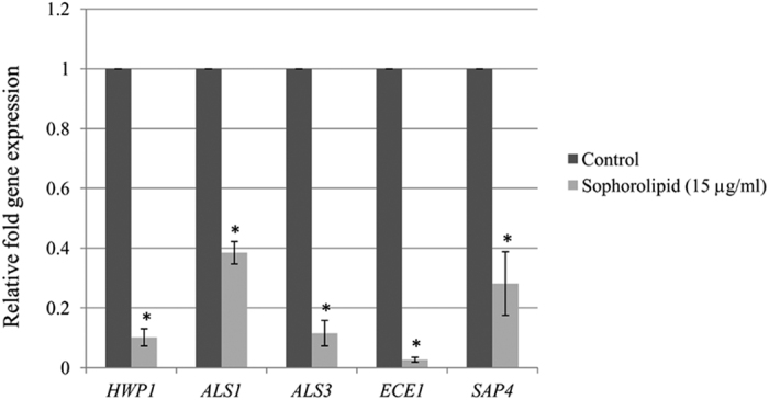 Effect of sophorolipid on the expression of C. albicans hypha specific genes. C. albicans cells were incubated in the absence (control) or presence (15 μg/ml) of SL in RPMI-1640 medium at 37 °C for 5 hrs. Following incubation expression of the indicated genes were determined by qRT-PCR. Expression level of each gene is displayed after normalization with internal control housekeeping gene ACT1 . The histogram shows the relative expression fold change of genes by SL treatment with respect to the control. Results represent the average of three independent experiments ± SD. * p