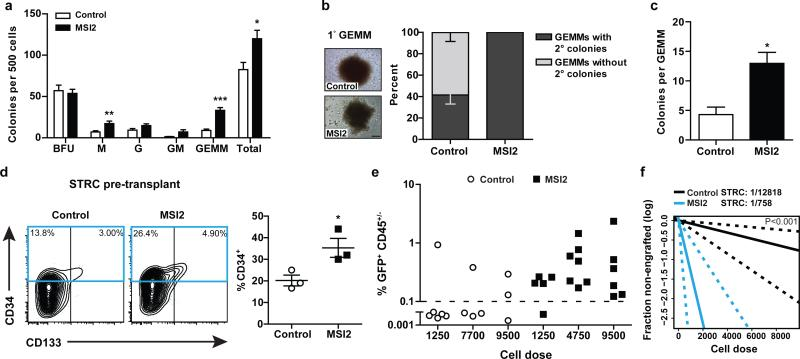 MSI2 OE enhances in vitro CB progenitor activity and increases numbers of STRCs a, CFU output from transduced Lin − CB (n=9 control and 10 MSI2 OE cultures from 5 experiments). b, CFU-GEMM secondary CFU replating potential (n=24 control and 30 MSI2 OE from 2 experiments) and images of primary GEMMs (scale bar 200 μm). c, Number of secondary colonies per replated CFU-GEMM from b . d, CD34 expression in STRCs prior to transplant (n=3 experiments). e, Human chimerism at 3 weeks in mice transplanted with varying doses of transduced STRCs. Dashed line indicates engraftment cutoff (n=3 experiments). f, STRC frequency as determined by LDA from e . Dashed lines indicate 95% C.I. Data shown as mean ± SEM. *p