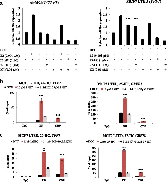 25-HC and 27-HC enhance recruitment of ER to endogenous E-regulated genes in ER+ LTED cells. wt-MCF7 and MCF7 LTED cells were treated with E2, 25-HC and 27-HC alone or in combination with ICI182780 ( ICI ) for 24 hours. mRNA was extracted and quantitative RT-PCR used to measure expression of TFF1 . a Data shown are representative of three independent biological experiments. Bars : ± SEM. b MCF7 LTED cells were synchronized using α-amanitin and treated with 25-HC for 45 minutes [ 26 ]. ChIP was carried out to assess the recruitment of ER to the GREB1 and TFF1 promoters, respectively. To provide evidence for an activated complex, histone deacetylase CBP recruitment was also assessed. c Effect of 27-HC on ER and CBP recruitment to the TFF1 and GREB1 promoters. Data shown are representative of three technical replicates. Bars : ± SEM. DCC Dextran-coated charcoal, E2 estradiol, ER estrogen receptor alpha, ERE estrogen response elements, HC hydroxycholesterol, LTED , long-term estrogen deprivation, wt wild type