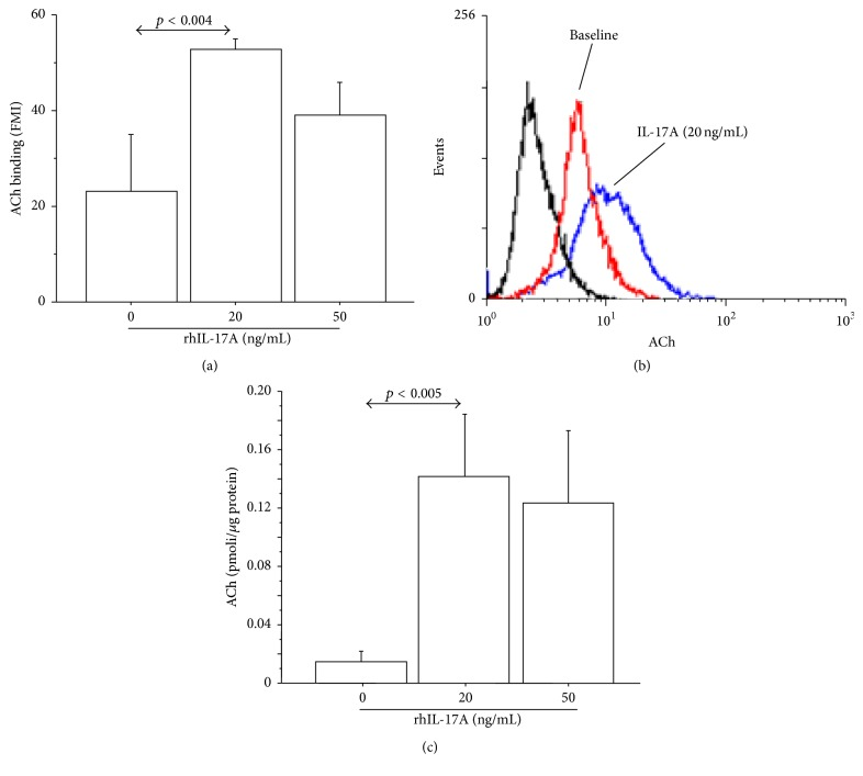 rhIL-17A increased endogenous ACh binding and production in 16-HBE cells. Cells were stimulated with rhIL-17A (0–50 ng/mL) for 24 h to evaluate (a) ACh binding by flow cytometry. Bars represent mean ± SD of fluorescence mean intensity (FMI) of three separate experiments. (b) Representative flow cytometry analysis is shown. (c) ACh production expressed as pmoli/ μ g protein. Bars represent mean ± SD of three different experiments. Statistical analysis was performed by ANOVA test followed by Fisher's PLSD multiple comparison test. The black curve represents the anti-IgG isotype negative control antibody.