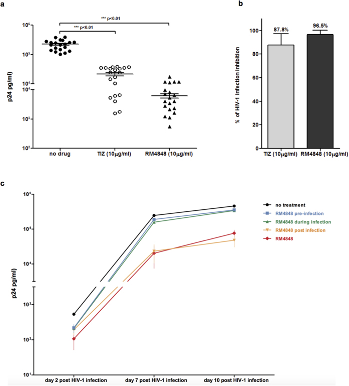 ( a ) p24 viral antigen levels 10 days post-infection in the supernatant of <t>HIV-1</t> infected PBMCs treated with TIZ (10 μg/mL) or RM-4848 (10 μg/mL). Results obtained with <t>PBMC</t> of 20 different healthy donors are shown. Median values and statistical significance is presented. ( b ) Inhibition (%) of viral replication in PBMC of 20 different healthy donors infected in vitro with HIV-1 in the presence of TIZ- (10 μg/mL) or RM-4848- (10 μg/mL). Median values and statistical significance is presented. ( c ) p24 viral antigen levels in PBMCs infected with HIV-1 in the presence of RM-4848 throughout infection (RM-4848)(10 μg/mL) or in medium alone (no treatment). In addition to these two situations, results of 3 other experimental conditions are shown: 1) PBMCs treated with RM-4848 before being infected (pre-infection); 2) RM-4848 present during the 24 hours infection period (during infection) and then washed away; 3) RM-4848 added 24 hours after infection (post infection). Mean values ± standard errors are shown.