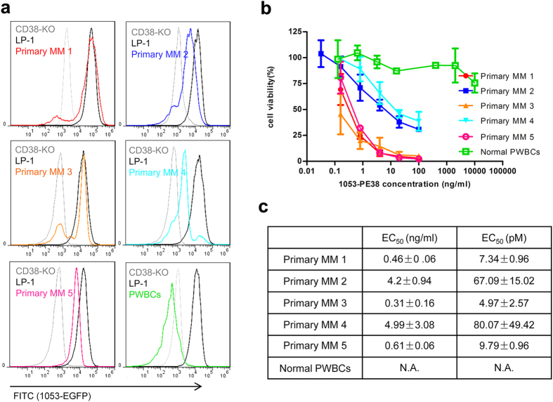 CD38 expression level of primary MM and the corresponding effects of the 1053-PE38. ( a ) CD38 expression in five different MM patient samples and PWBCs were analyzed by 1053-EGFP staining method, together with LP-1 and CD38-KO as relative expression controls. ( b ) The cytotoxicity of 1053-PE38 after 3-day treatment was analyzed by calcein staining followed by FACS. Three repeats were performed on each batch of samples.