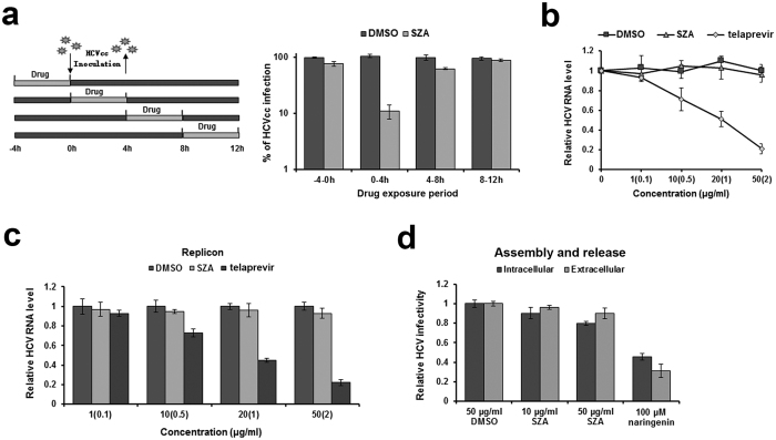 SZA has no inhibitory effect on viral replication, assembly and release. ( a ) Huh7 cells were infected with HCVcc of JFH-1 (MOI = 1) and treated by 20 μg/ml of SZA for 4 h during indicated time periods as shown in the left panel. At 48 h post-infection, infected cells were performed IF. Results are plotted as % of HCVcc infection compared to DMSO treated group in parallel. ( b ) Antiviral activity of SZA on replication. JFH-1 <t>RNA</t> was electroporated into Huh7 cells. At 4 h after electroporation, the cells were treated with the indicated concentrations of SZA for 4 h at 37 o C. Concentrations of telaprevir are shown in brackets of the figure. Results are shown as relative <t>HCV</t> RNA level compared to untreated group. ( c ) BB7 replicon cells were incubated with the indicated concentrations of SZA or telaprevir for 4 h. Viral RNA levels were determined by qPCR 48 h after treatment. Concentrations of telaprevir are in brackets of the figure. Results are plotted as relative HCV RNA level compared to DMSO treated group. ( d ) Antiviral activity of SZA on assembly and release. Huh7 cells were electroporated with JFH-1 RNA of HCV, followed by 4 h treatment of the indicated concentrations of SZA. At 48 h after electroporation, cells were subjected to three cycles of freeze and thaw to test the intracellular viral infectivity; supernatants of the electroporated cells were collected for the detection of extracellular viral infectivity. 100 μM naringenin was introduced as a positive control. Results are shown as relative HCV infectivity compared to DMSO treated group. Data shown as mean ± SD of three independent experiments.