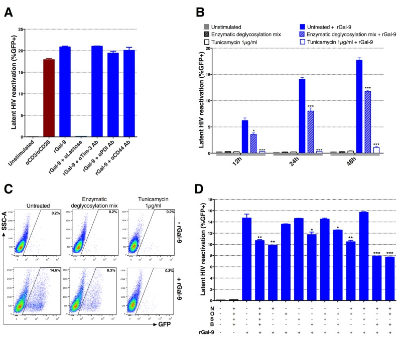 rGal-9 induces HIV transcription and reactivation in a glycan-dependent manner. ( A ) Effects of anti-Tim-3 antibody, anti-CD44 antibody, or anti-PDI antibody administration on rGal-9-mediated reactivation of HIV in J-Lat 5A8 cells. Antibodies were added 30 minutes prior to administration of 200 nM rGal-9. α-lactose (30 mM) was used as a positive control. ( B , C ) Treatment of J-Lat 5A8 cells with either 1 μg/ml tunicamycin, or with an enzymatic deglycosylation mix for 24 hours prior to rGal-9 stimulation. J-Lat cells were analyzed by flow cytometry to assess HIV-encoded GFP expression. Statistical comparisons were performed using two-tailed Mann-Whitney tests. ( D ) Effects of deglycosylation enzyme combinations on rGal-9-mediated HIV latency reversal in J-Lat 5A8 cells. N = PNGase F (Elizabethkingia miricola); O = O-Glycosidase (recombinant from Streptococcus pneumonia); S = α-(2→3,6,8,9)-Neuraminidase (recombinant from Arthrobacter ureafaciens); B = β(1→4)-Galactosidase (recombinant from Streptococcus pneumonia) + β-N-Acetylglucosaminidase (recombinant from Streptococcus pneumonia). Mean ± SEM is displayed, and statistical comparisons were performed using two-tailed unpaired t tests. * = p