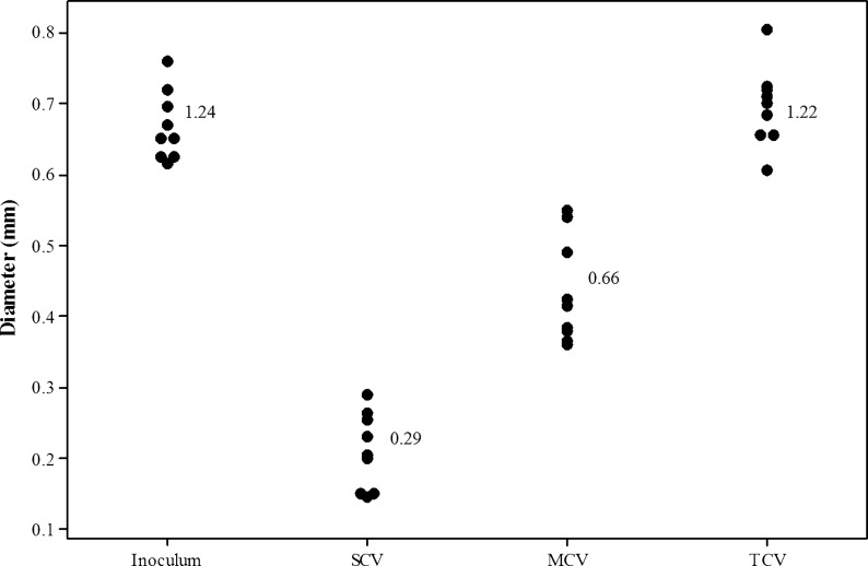 Colony quantification of serotype 22F biofilm-derived colony variants. Diameter values of the three distinct biofilm-derived colony variant populations harvested from pneumococcal biofilms quantified using ImageJ analysis software. A total of nine colony variants from triplicate biofilms were measured. Numbers signify mean values.