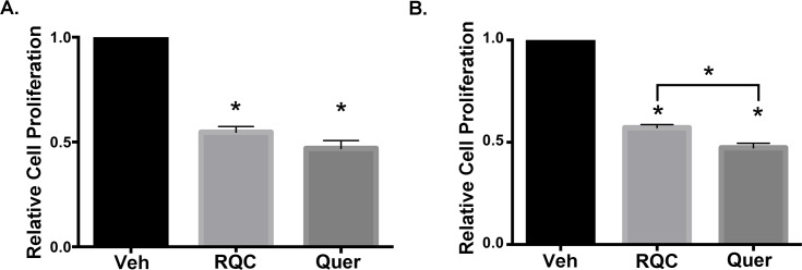 Effect of combined RQC or individual quercetin on breast cancer cell proliferation. MDA-MB-231 and MDA-MB-435 cells in 5% serum and phenol red-free media were treated with vehicle, combined resveratrol, quercetin, and catechin (RQC) at 5μM each or 15μM quercetin for 48h. Cells were fixed, nuclei stained with <t>Propidium</t> Iodide (PI), and intact (non-apoptotic) nuclei quantified. Percentage of viable cells ± SEM for 30 microscopic fields/triplicate treatments (N = 3) is presented. A) Average cell viability of MDA-MB-231 cells treated with RQC or quercetin relative to vehicle. (B) Average cell viability of MDA-MB-435 cells treated with RQC or quercetin relative to vehicle.