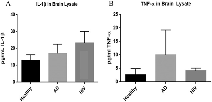 Assay of IL-1β (panel A) and <t>TNF-α</t> (panel B) in brain tissues from healthy, AD, and HIV-1-positive subjects. Data represent means ± SE from 5 healthy individuals, 5 AD subjects and 5 HIV-1-positive subjects *p