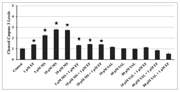 Effects of MS and SAL alone or in combination with EF on levels of caspase-3 cleavage in BxPC-3 cells, as measured by colorimetric assay at 24h. *p