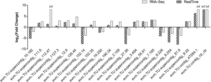 Expression pattern validation of 21 selected DEGs by qRT-PCR in transgenic SunUp relative to the donor control Sunset . The transcriptional level of candidate genes was examined by real-time PCR with three biological replicates. EIF was used as an internal control. RNA-Seq data were highly consistent with qRT-PCR results ( r = 0.9247). The Y -axis indicates the fold change of transcript abundance in SU-NP relative to the control SS-NP.