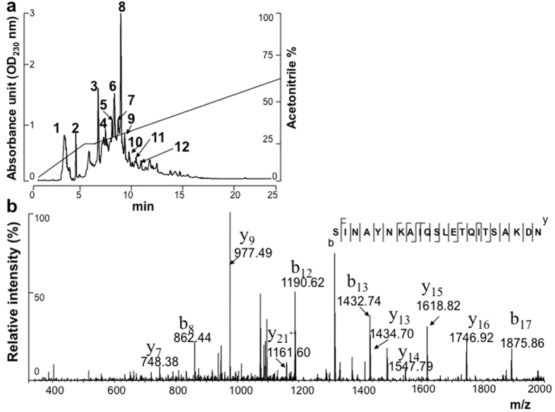 """HPLC separation in combination with mass spectrometry for Embp identification. The proteins in the culture supernatants of S. epidermidis (ATCC12228) were separated by reversed-phase HPLC using a LUNA <t>C18</t> 5 μm column. ( a ) Twelve fractions were collected after HPLC separation. The HI activity of the eluted proteins (100 μl) in each fraction was tested using A/San Diego/1/09(H1N1 pdm09) as the virus antigen. ( b ) Tryptic digests of proteins in fraction 12 of the HLPC separation, which showed the greatest HI activity, were subjected to Nano-LC-LTQ MS/MS. A sequenced peptide (SINAYNKAIQSLETQITSAKDN) is shown and was identified as an internal peptide of Embp (Q8CP76). The m/z value of each """"y"""" and """"b"""" ion in collision-induced dissociation (CID) spectra is indicated."""