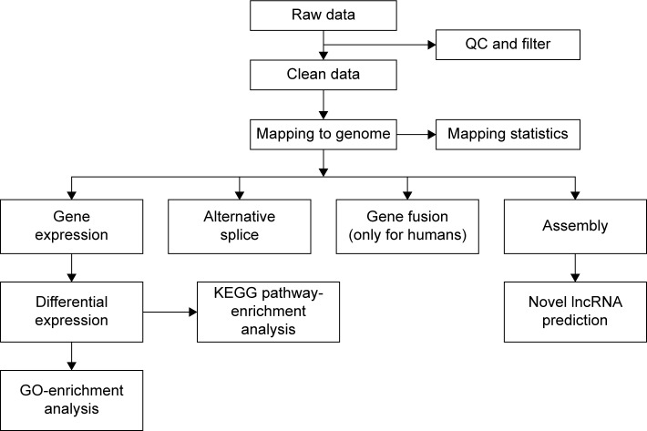 Main flow diagram of <t>transcriptome</t> sequencing. Abbreviations: QC, quality control; KEGG, Kyoto Encyclopedia of Genes and Genomes; lncRNA, long noncoding <t>RNA;</t> GO, gene ontology.