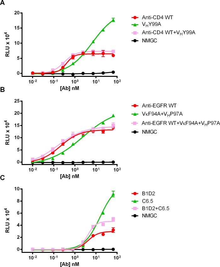Competition ADCC studies. (A) ADCC activity of parental ibalizumab and anti-CD4 variant V H Y99A alone or in combination against CD4 + T cells. (B) ADCC activity of parental GA201 and anti-EGFR variant VκF94A+V H P97A alone or in combination against MDA-MB-231 cells. (C) ADCC activity of anti-HER2 B1D2 and C6.5 IgGs alone or in combination against BT474 cells. NMGC represents isotype contro l antibody. Each point represents the mean values of triplicate wells and the standard deviation is represented by error bars.